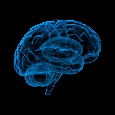 A kétnyelvű agy 1. rész