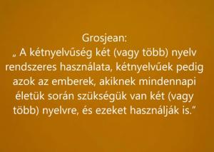 Ki a kétnyelvű?