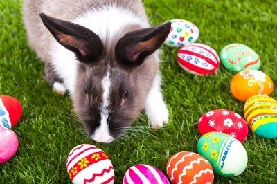 Húsvéti szókincs és videók angolul